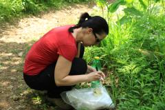 Soil sampling (Dr. Čerevková)